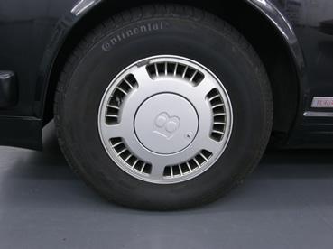 P3010095